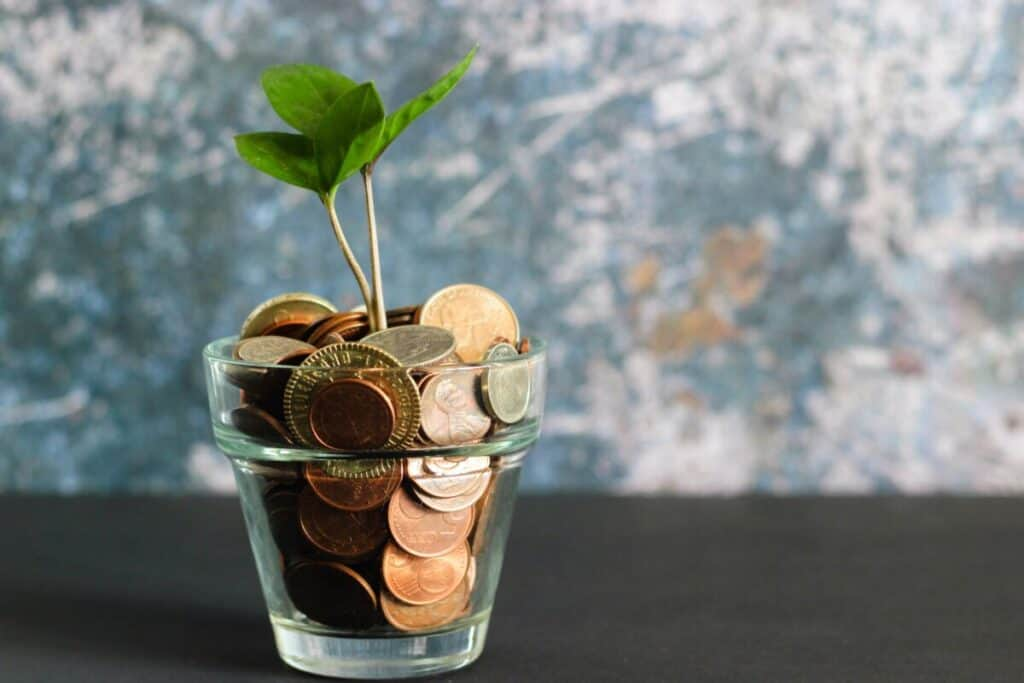 Plant growing in jar of copper coins.